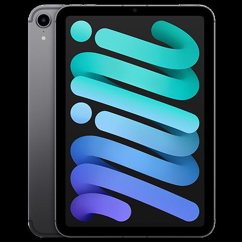 Apple iPad mini 2021 Wi-Fi + Cellular 64GB spacegrau